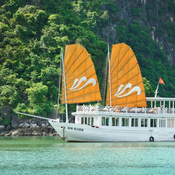 Paradise Explorer Halong Bay Day Cruise