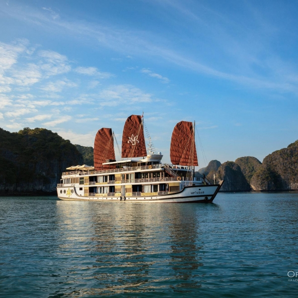 Orchid Cruises, Halong Bay & Lan Ha Bay