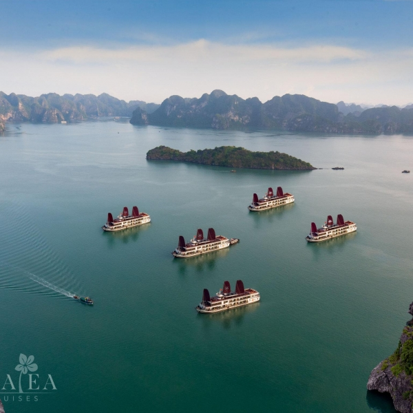 Azalea Cruises, Halong Bay & Lan Ha Bay